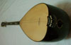 Acoustic saz with fine tuners port